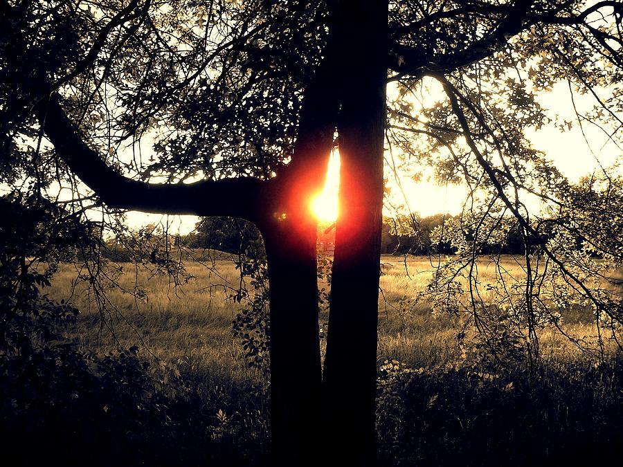 Buckhorn Photograph - Alien Sunset by John Carncross