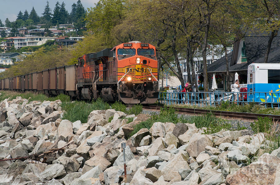 British Columbia Photograph - All Aboard by Malu Couttolenc
