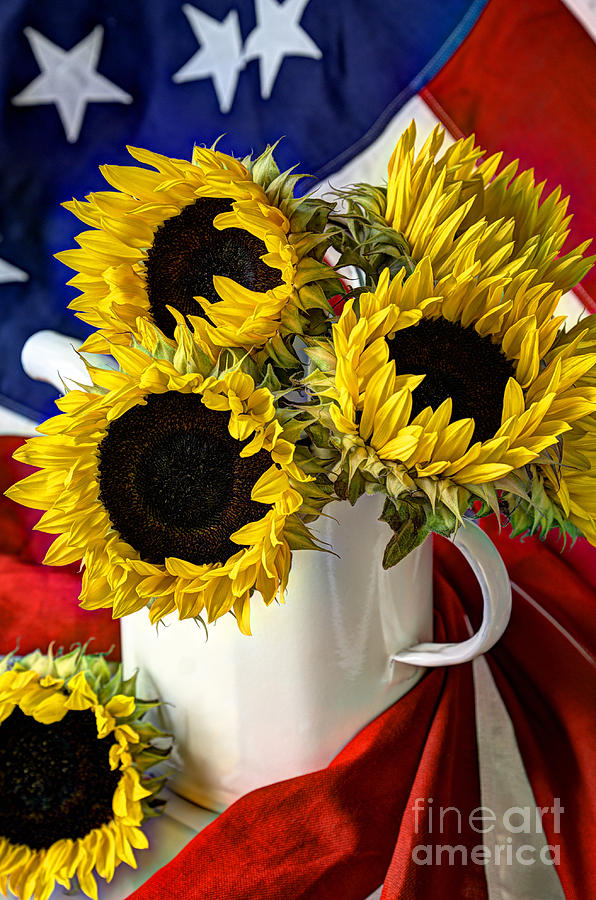 All American Sunflowers by Sarah Schroder