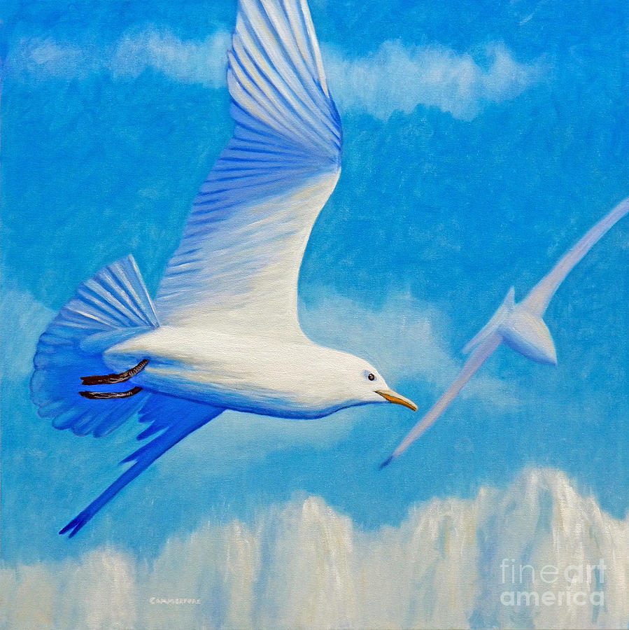 Seagull Painting - All Fly Home by Brian  Commerford