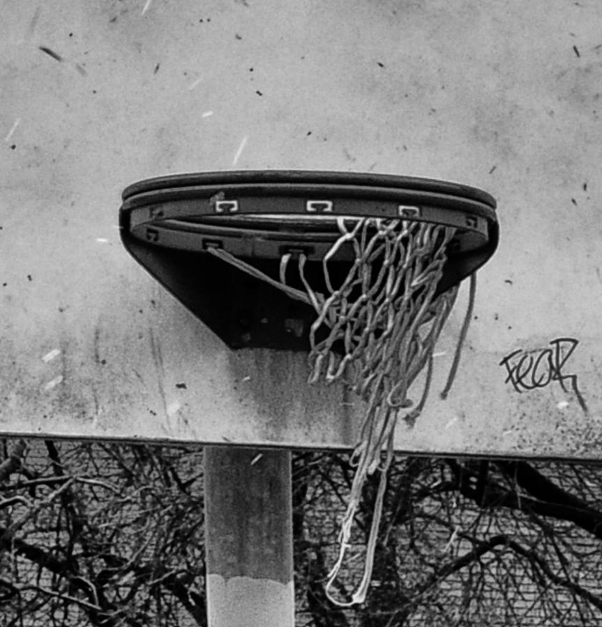 Basketball Photograph - All Net by Bill Cannon