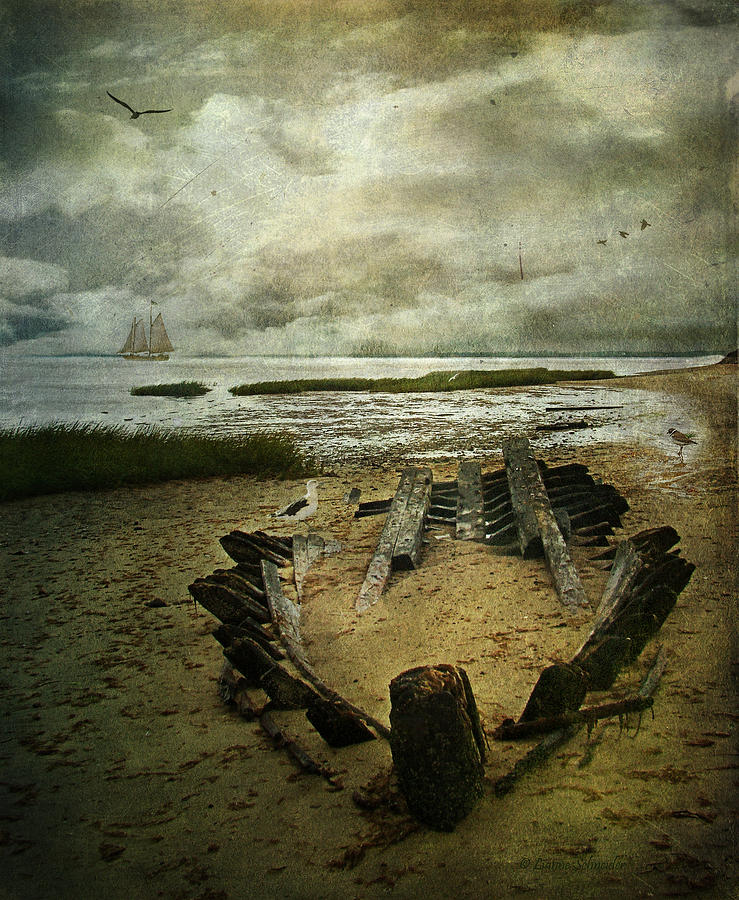 Seascape Photograph - All That Remains by Lianne Schneider