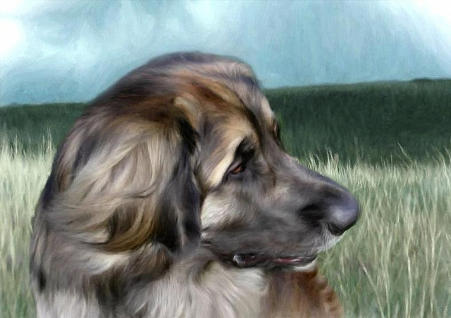Dog Digital Art - Allan by Gun Legler