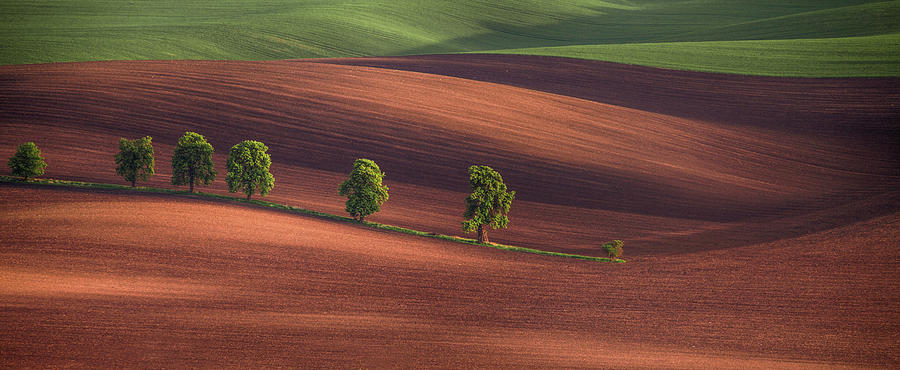 Panorama Photograph - Allley by Peter Svoboda, Mqep