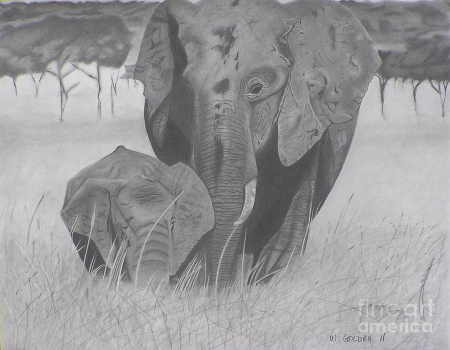 Elephants Drawing - Allmother by Wil Golden