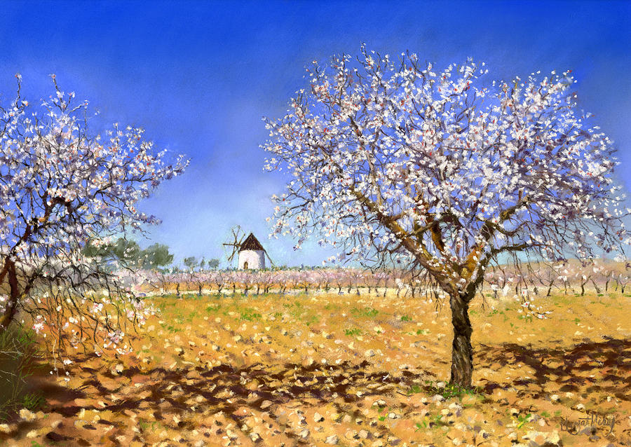 Pastel Painting - Almendros by Margaret Merry