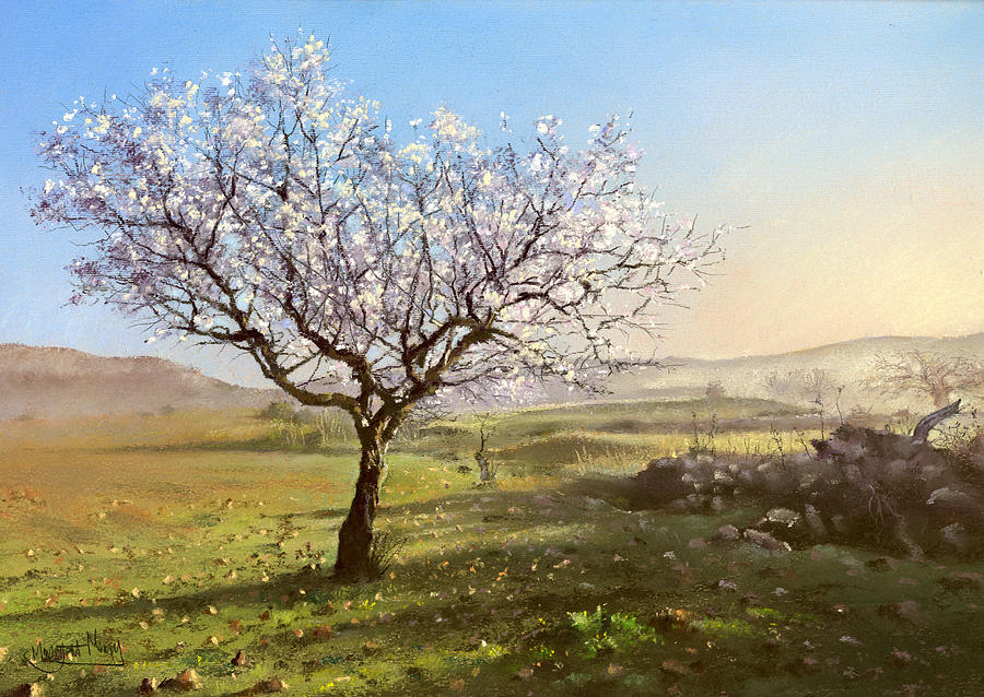 almond-blossom-margaret-merry Painting Outside Mobile Home on mobile home outside cleaning, house outside painting, mobile home outside doors, mobile home outside siding, mobile home outside additions, mobile home outside remodeling, mobile home outside landscape,