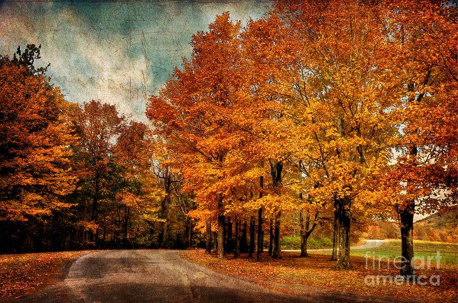 Country Road Photograph - Almost Home by Lois Bryan