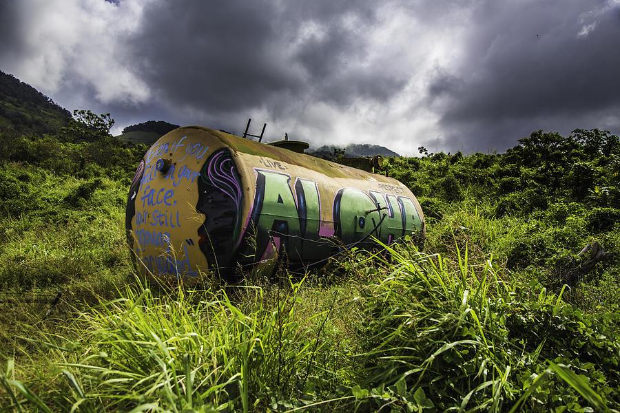Maui Photograph - Aloha by Luna Curran