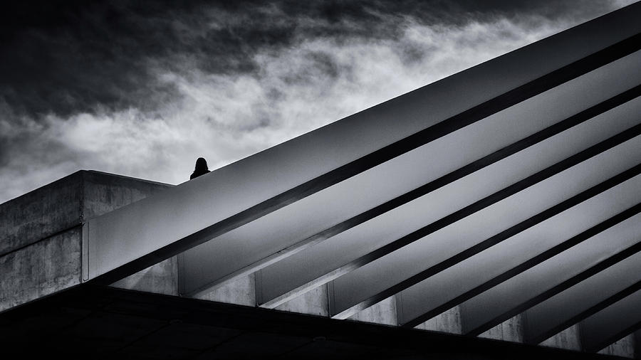 alone by Darko Ivancevic
