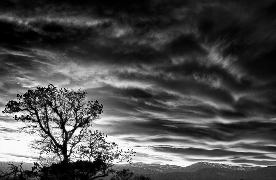 New Mexico Photograph - Alone by Helene Kobelnyk