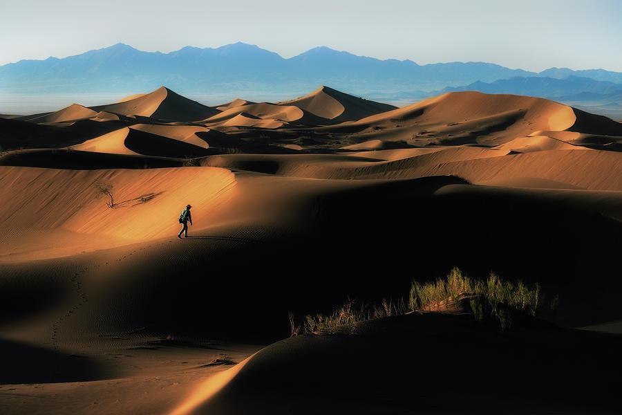 Desert Photograph - Alone In Nature by Babak Mehrafshar (bob)