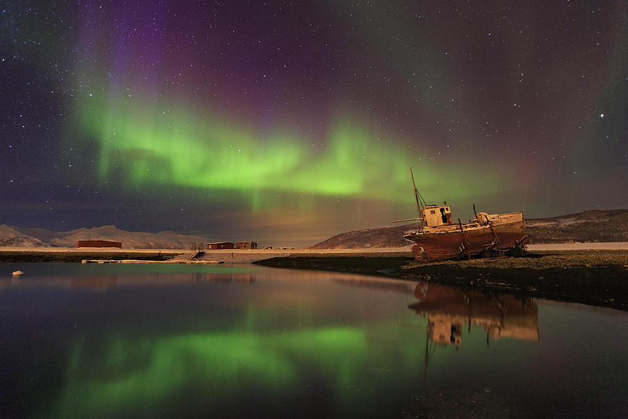 Northern Lights Photograph - Alone In The Night ... by Iurie Belegurschi