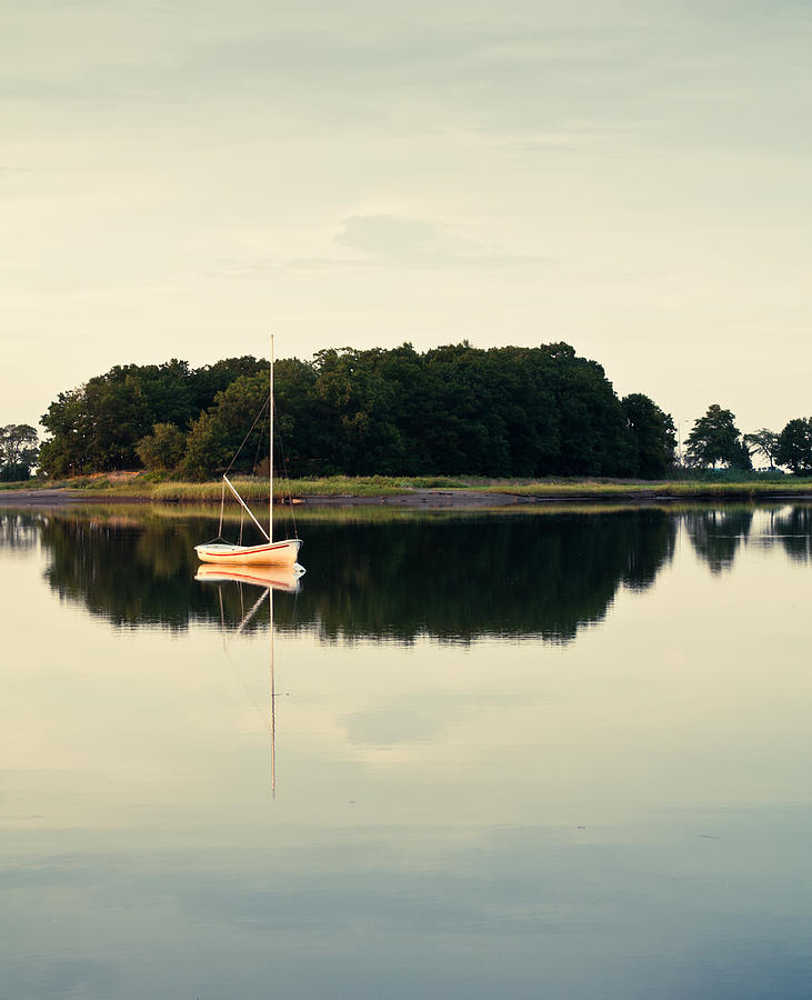 Quincy Photograph - Alone by Lee Costa