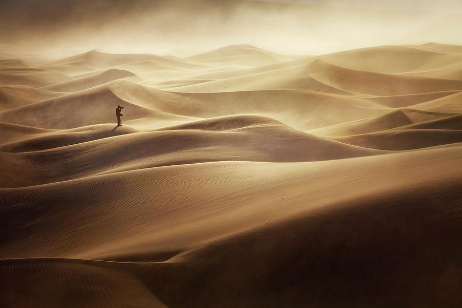 Desert Photograph - Alone by Mirko Vecernik
