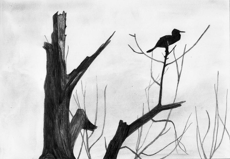 Landscape Drawing - Alone by Shashi Kumar