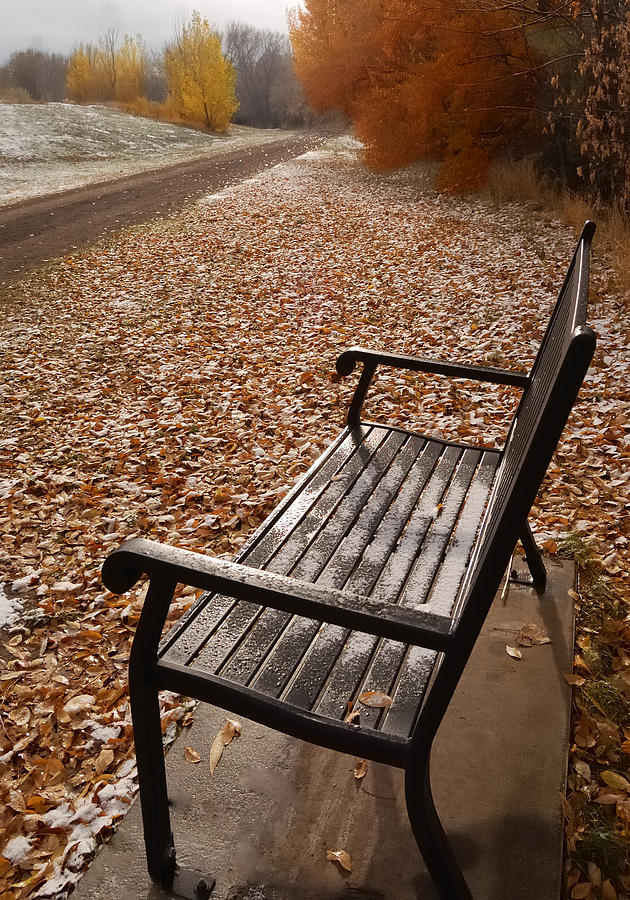 Benches Photograph - Alone With Autumn by Steven Milner