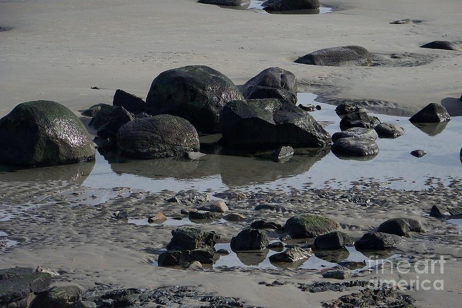 Landscape Photograph - Along A Maine Beach by Eunice Miller