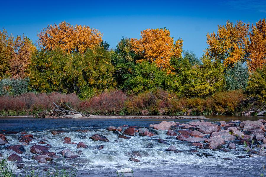 Creek Photograph - Along The Creek by Ernie Echols