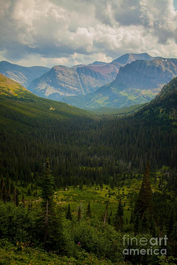 Glacier National Park Photograph - Along The Path To Iceburg 18 by Natural Focal Point Photography