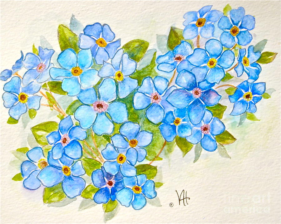Alpine Forget-me-not is a painting by Virginia Ann Hemingson which was ...