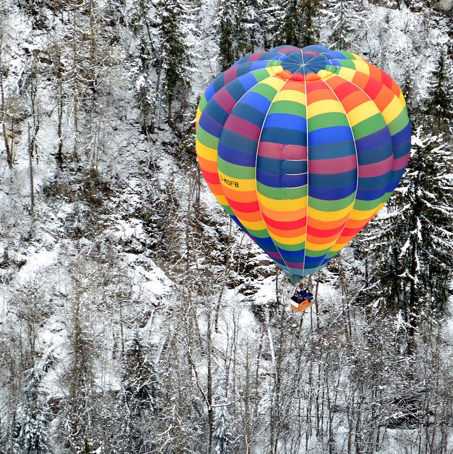Hot Photograph - Alpine Tree Flight by Stephen Richards