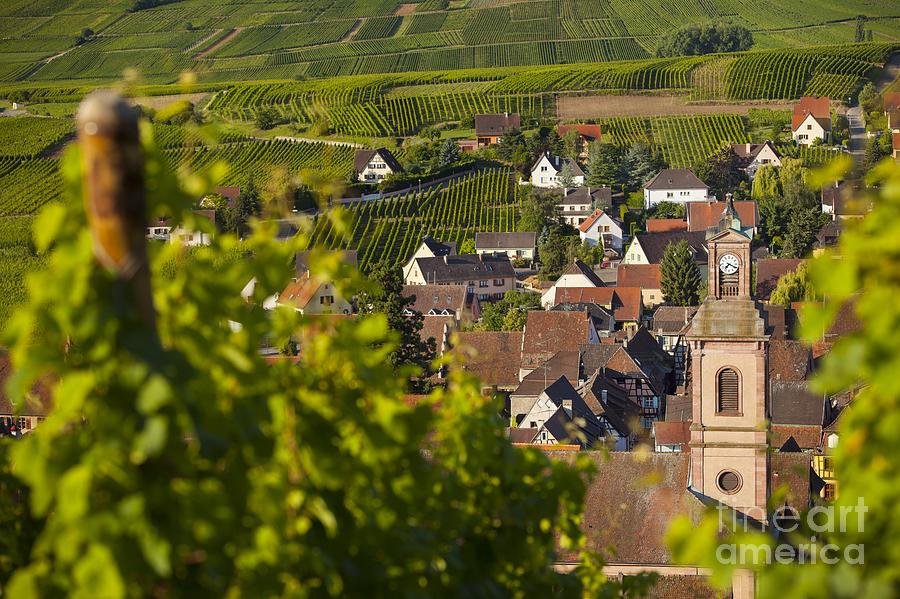 Alsace Photograph - Alsace Morning by Brian Jannsen