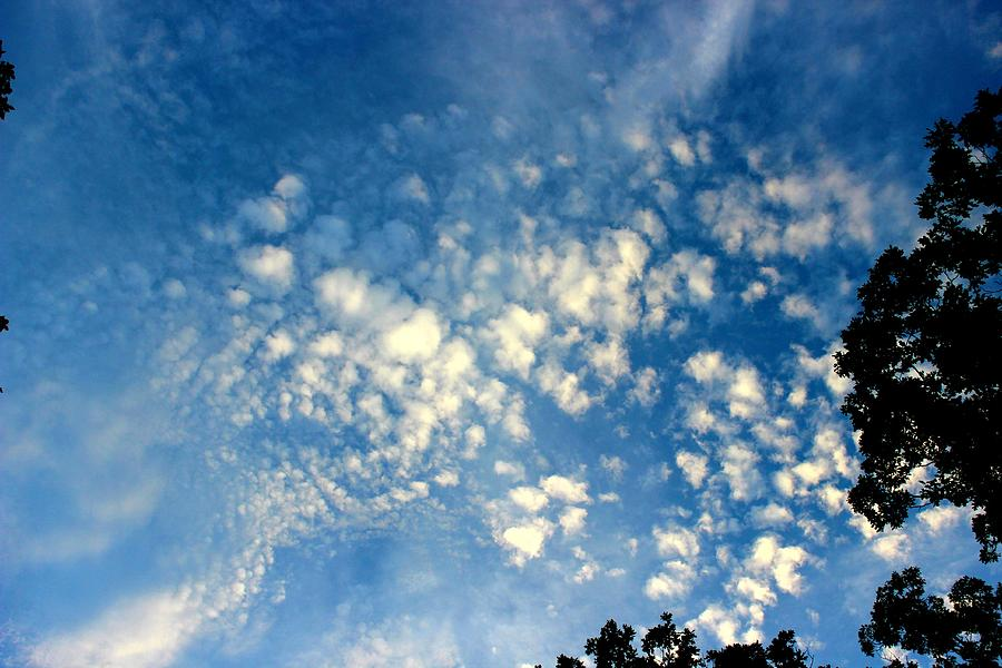 Altocumulus Clouds Photograph - Altocumulus Clouds by Candice Trimble