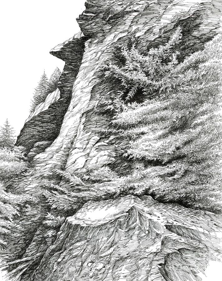 Ink Drawing Drawing - Alum Bluff Trail Crag by Bob  George