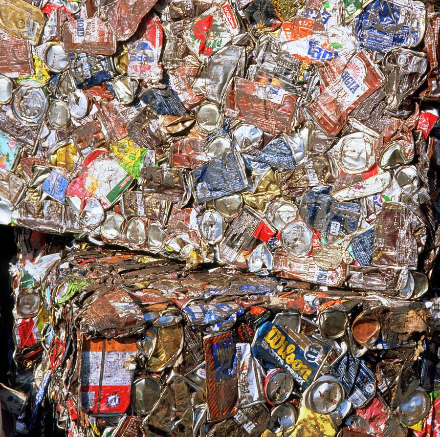 Aluminium Cans Photograph - Aluminium Cans For Recycling by Alex Bartel/science Photo Library