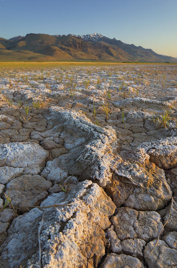 Alvord Desert Oregon Photograph by Alan Majchrowicz