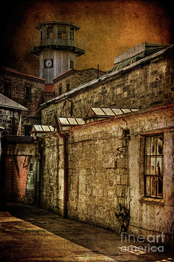 Prison Photograph - Always Watching by Lois Bryan