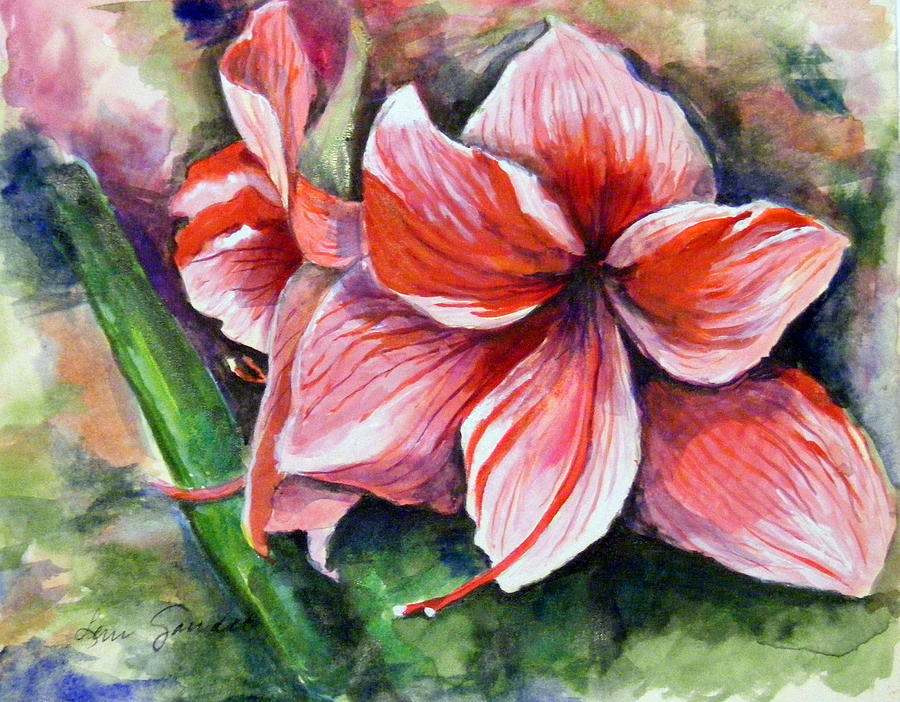 Floral Painting - Amaryllis by Lenore Gaudet