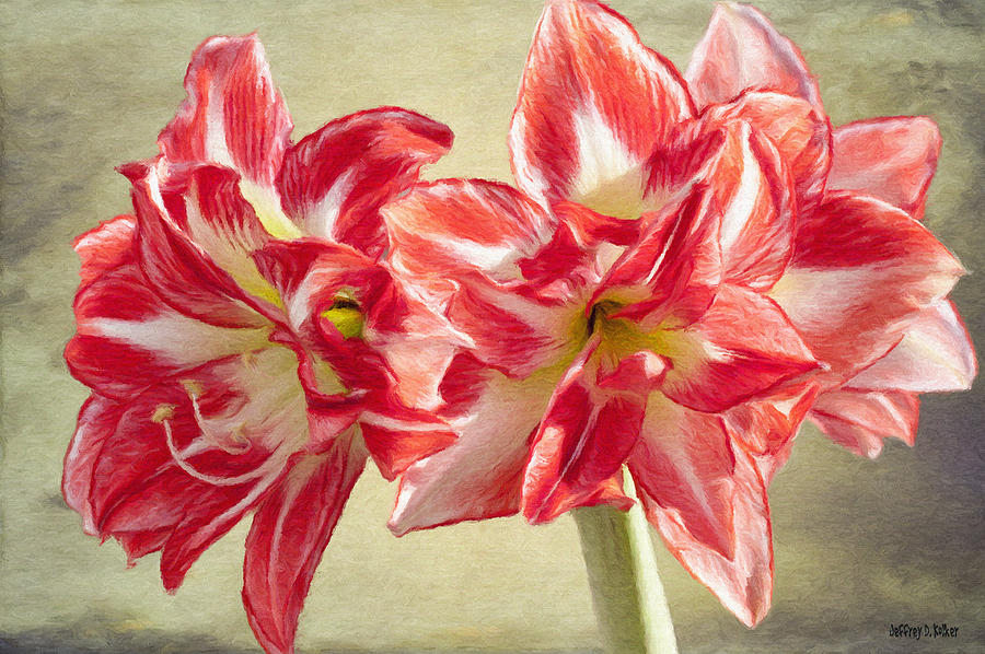 Amaryllis Painting - Amaryllis Red by Jeff Kolker