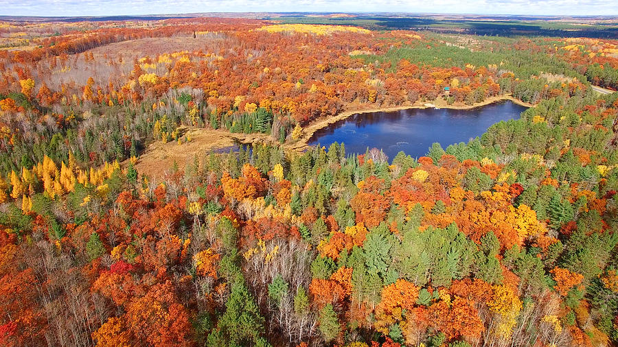 Amazing Autumn scenery, forests with lake, Fall colors, Aerial view Photograph by James Brey