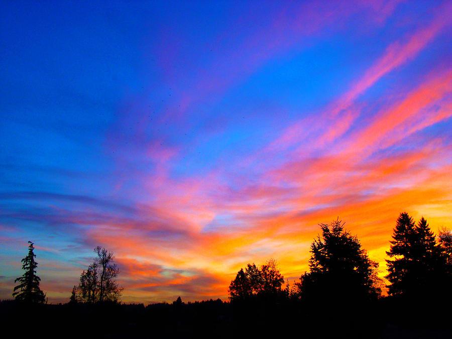 Sunset Photograph - Amazing Sunset by Lisa Rose Musselwhite