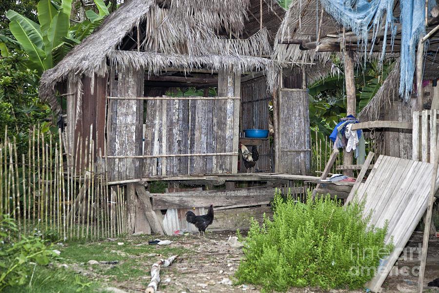 Amazon Photograph - Amazon Home by Timothy Hacker