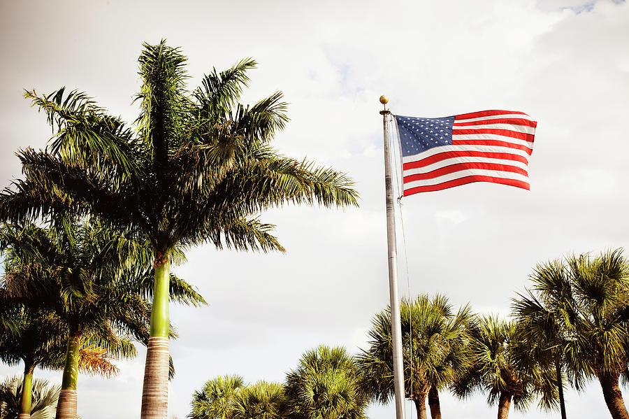 American Flag Flying Amongst Palm Trees Photograph by Ron Levine