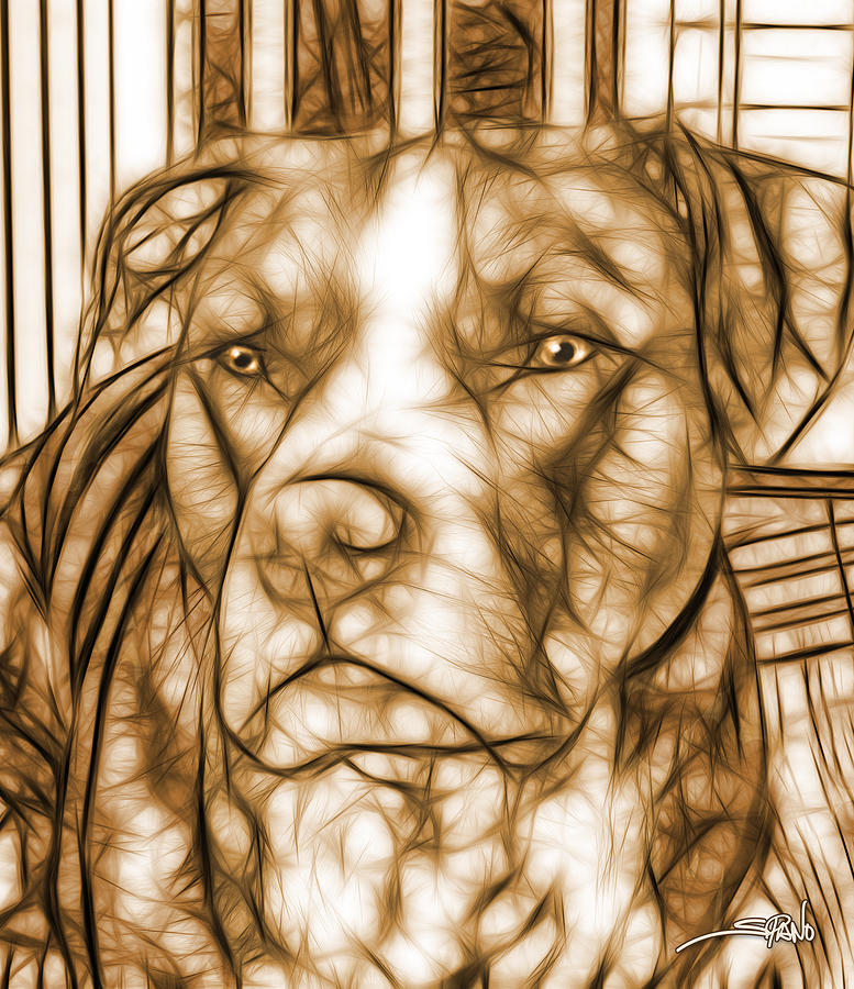 American Pit Bull - Sepia Sketch  by Michael Spano