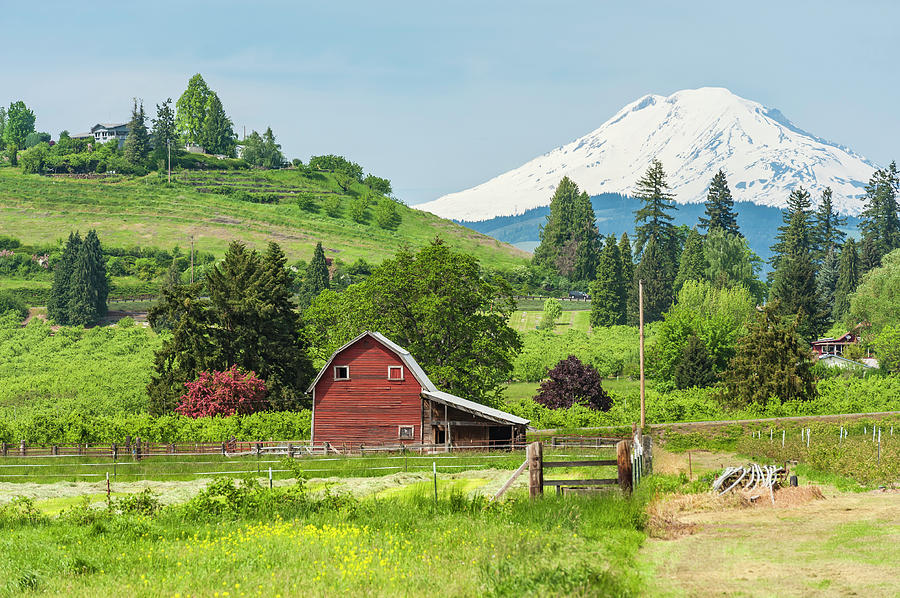 American Red Barn In Green Farmland Photograph by Fotovoyager
