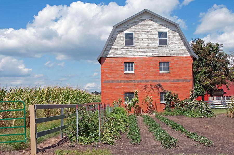 Amish Photograph - Amish Barn And Garden by David Arment