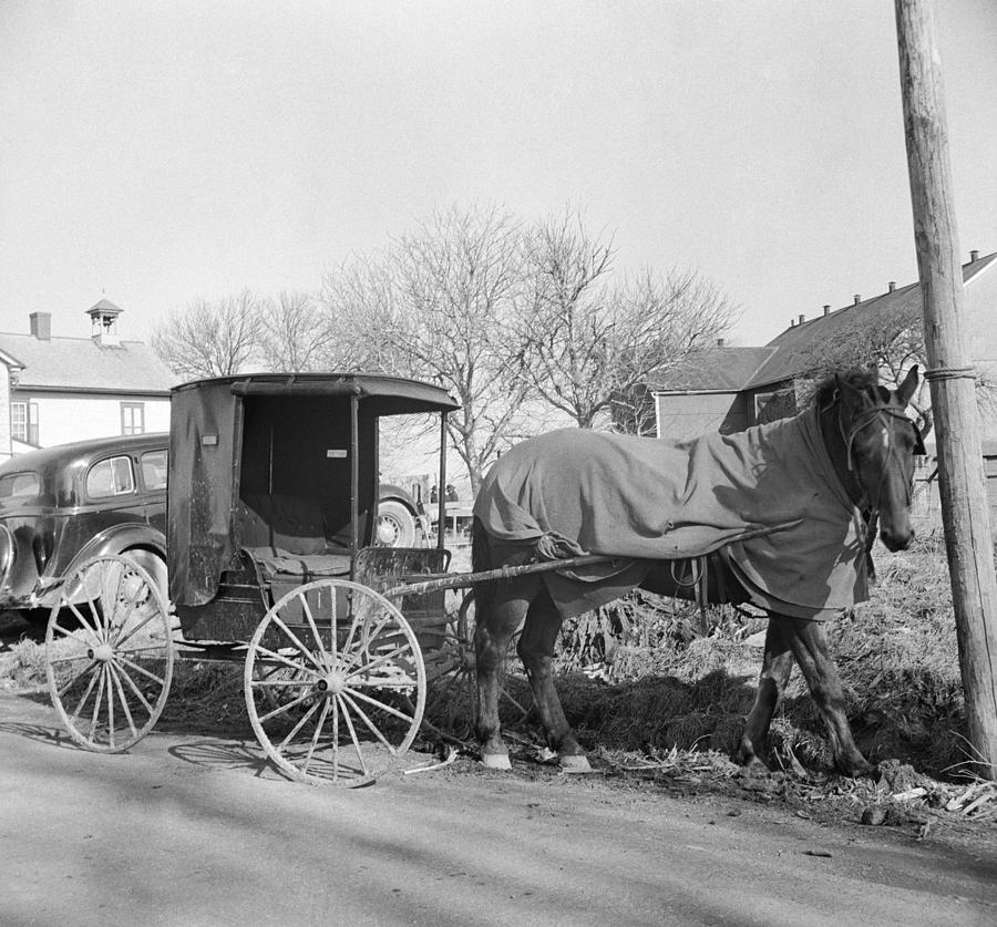 1942 Photograph - Amish Carriage, 1942 by Granger