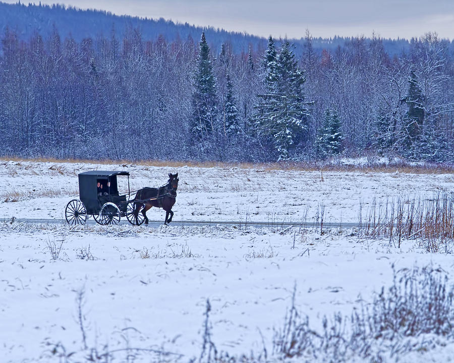 Barn Photograph - Amish Carriage by Jack Zievis