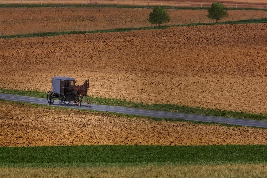Amish Photograph - Amish Country Lancaster Pennsylvania by Susan Candelario