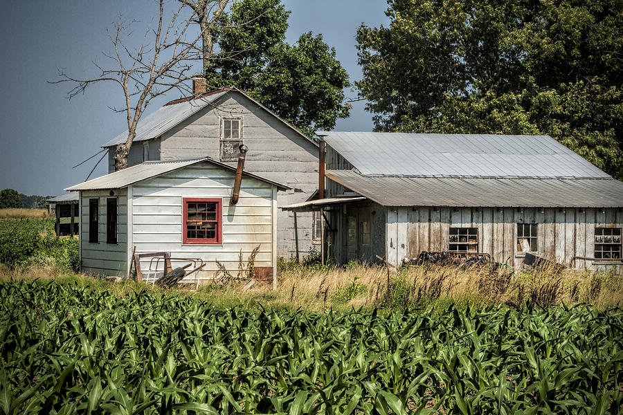 Amish Photograph - Amish Farm In Tennessee by Kathy Clark