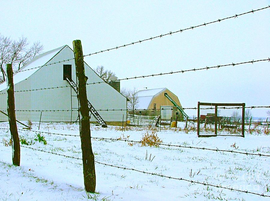 Amish Photograph - Amish Farm In Winter by Julie Dant