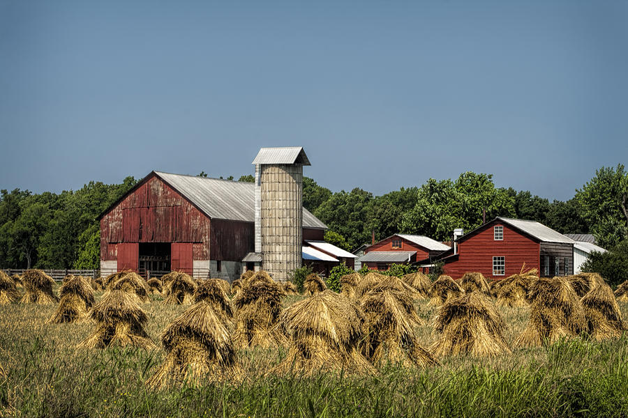 Amish Photograph - Amish Farm Wheat Stack Harvest by Kathy Clark