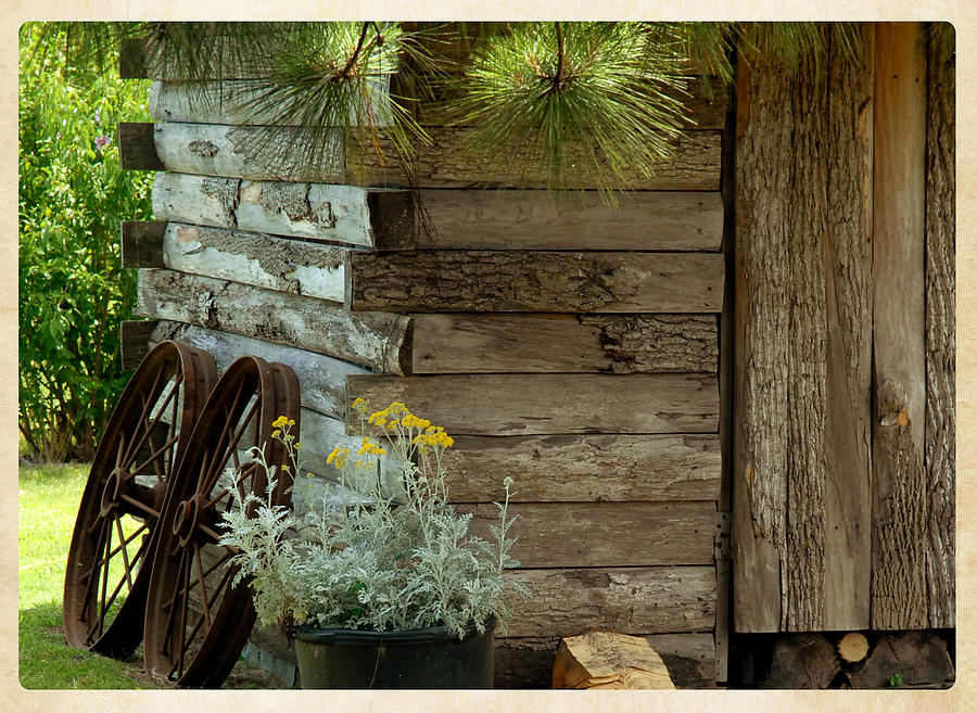 Landscape Photograph - Amish Wood Shed by Lena Wilhite
