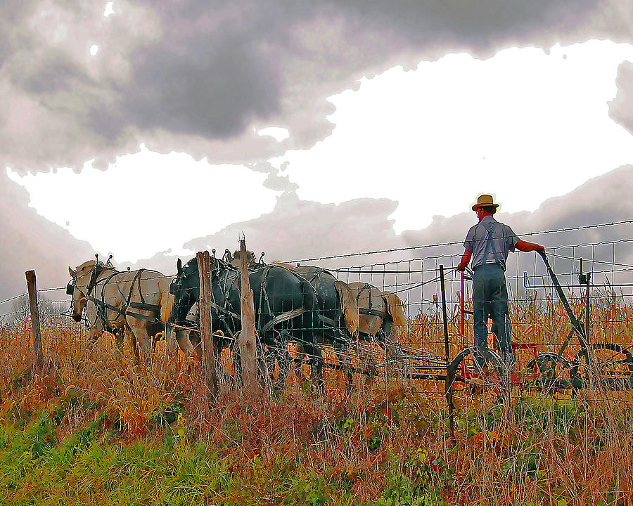 Amish Photograph - Amishman Driving Plow by Brian Graybill