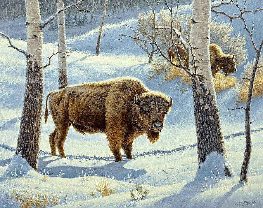 Wildlife Painting - Among The Aspens- Buffalo by Paul Krapf